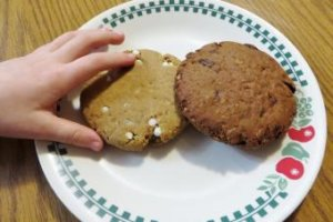Munk Pack Protein Cookies Review