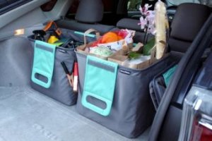 CleverMade TrunkCaddy Review