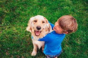 10 Best Dog Breeds for Your Family